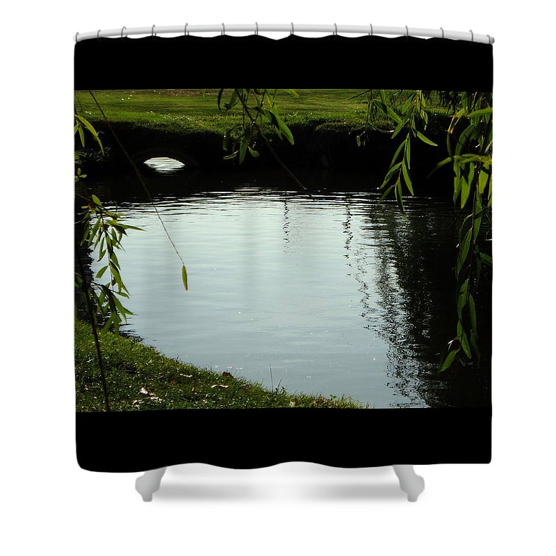 Pond Shower Curtain featuring the photograph Mystery Pond In The Green by Trinket's Legacy