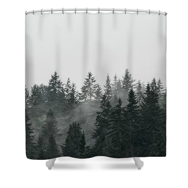 Canada Shower Curtain featuring the photograph Mystic Forest II by Brad Allen Fine Art