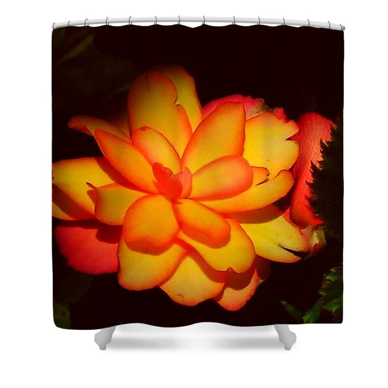 Flower Shower Curtain featuring the photograph Mystic by Juergen Weiss