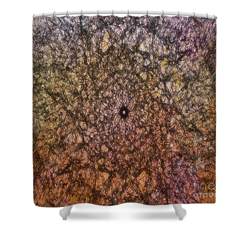 Pink Shower Curtain featuring the photograph Mystic Spring by Teresa Wilson