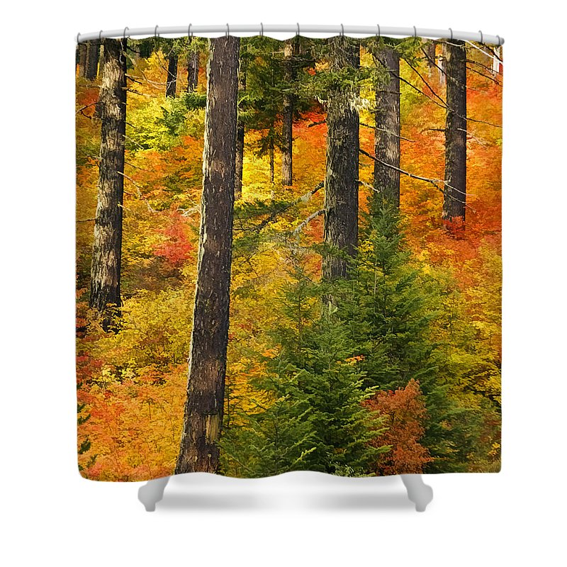 Nw Autumn Shower Curtain featuring the photograph N W Autumn by Wes and Dotty Weber
