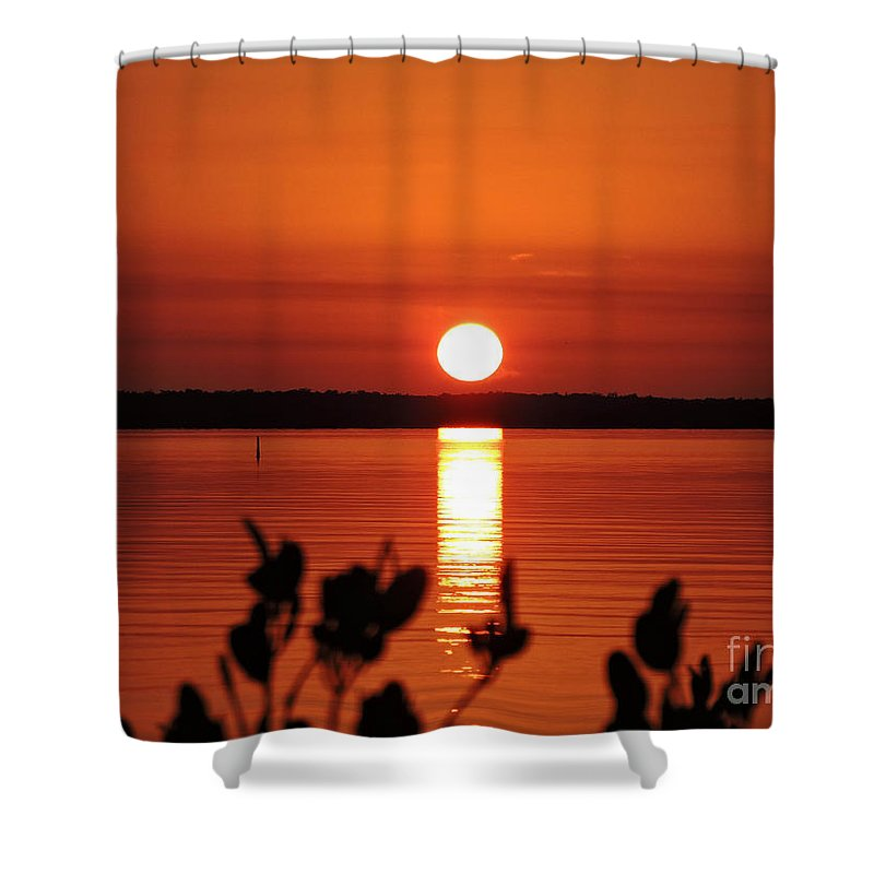 Sunset Shower Curtain featuring the photograph Naranja by Marilee Noland