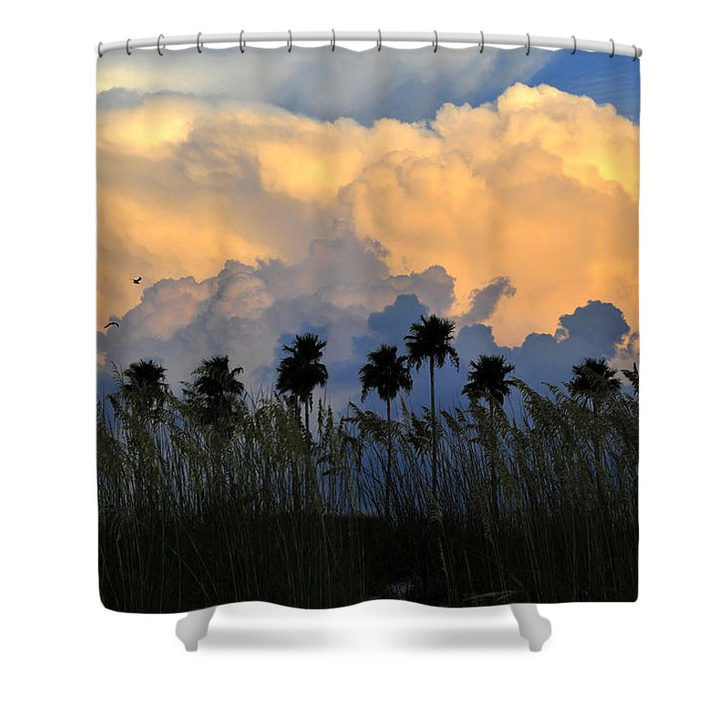 Fine Art Photography Shower Curtain featuring the photograph Native Florida by David Lee Thompson