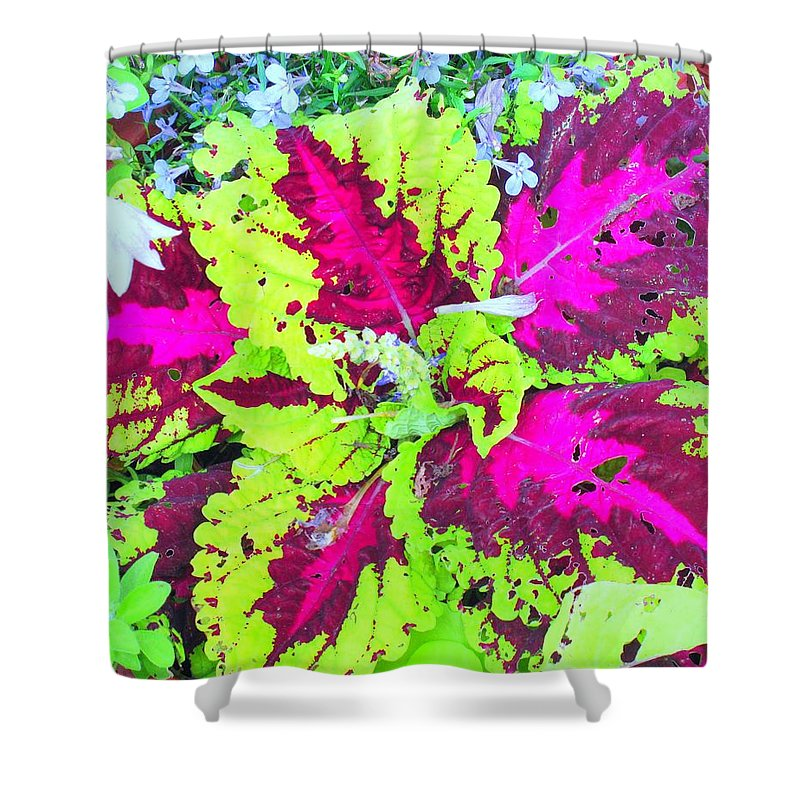 Flower Shower Curtain featuring the photograph Natural Abstraction by Ian MacDonald