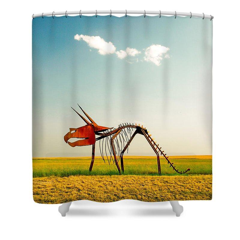 U.s. Steel Shower Curtains