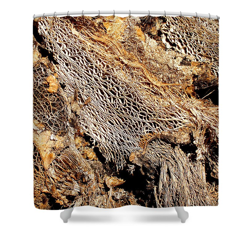 Texture Shower Curtain featuring the photograph Natural Textural Abstract by Wayne Potrafka
