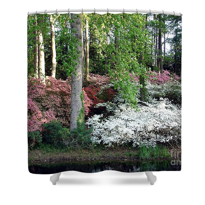Landscape Shower Curtain featuring the photograph Nature 2 by Shelley Jones