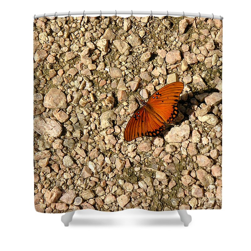 Nature Shower Curtain featuring the photograph Nature In The Wild - A Splash Of Color On The Rocks by Lucyna A M Green
