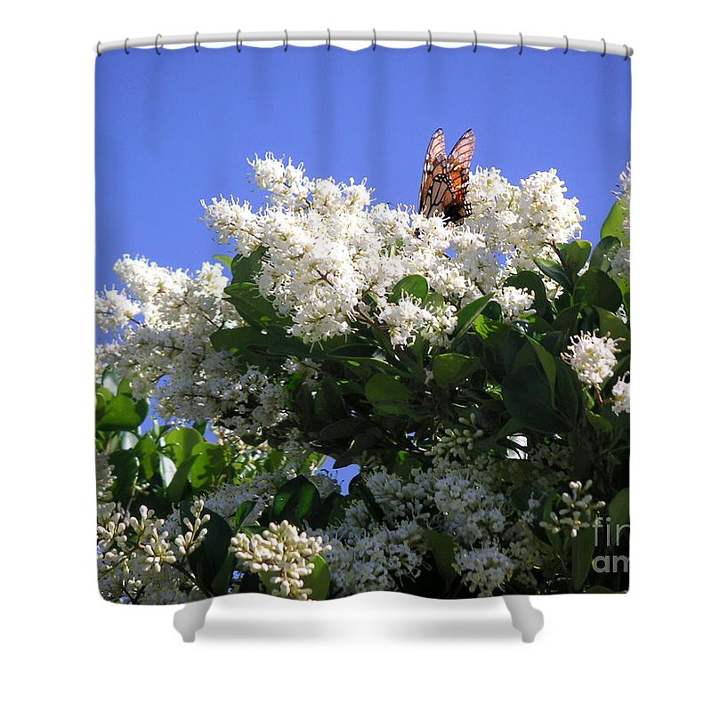 Nature Shower Curtain featuring the photograph Nature In The Wild - Bathing In Blooms by Lucyna A M Green