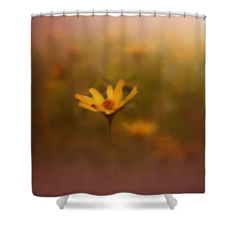 Nature Shower Curtain featuring the photograph Nature by Linda Sannuti