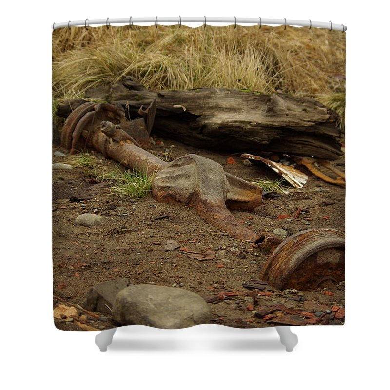 Nature Shower Curtain featuring the photograph Nature Wins by Cindy Johnston