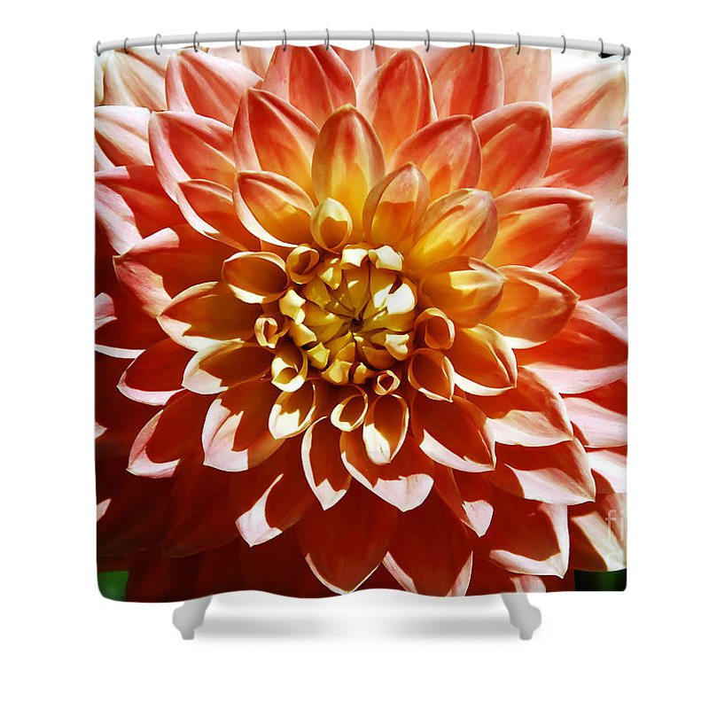 Flower Shower Curtain featuring the photograph Nature's Brilliance by David Lee Thompson