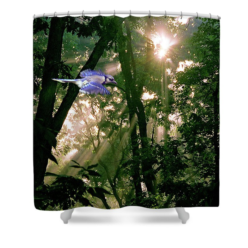 Bird Shower Curtain featuring the photograph Nature's Cathedral by Marie Hicks