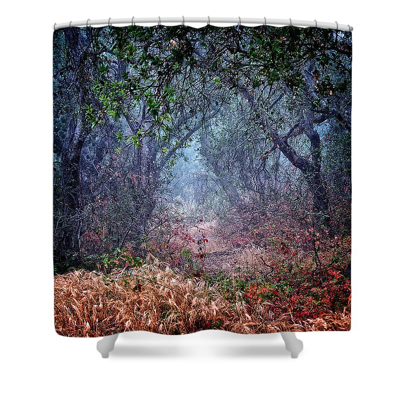 Nature Shower Curtain featuring the photograph Nature's Chaos, Arroyo Grande, California by Zayne Diamond Photographic