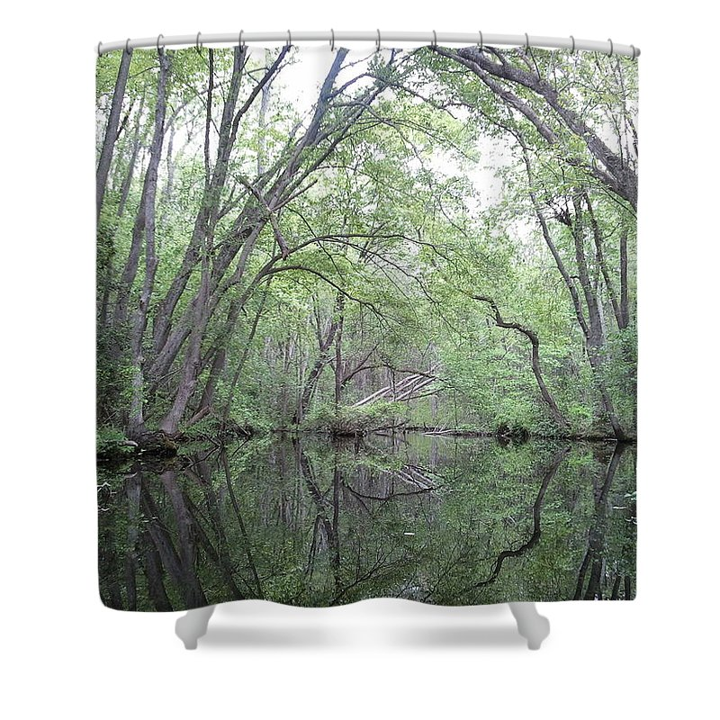 Pond Shower Curtain featuring the photograph Nature's Chapel by Lois Slaughter