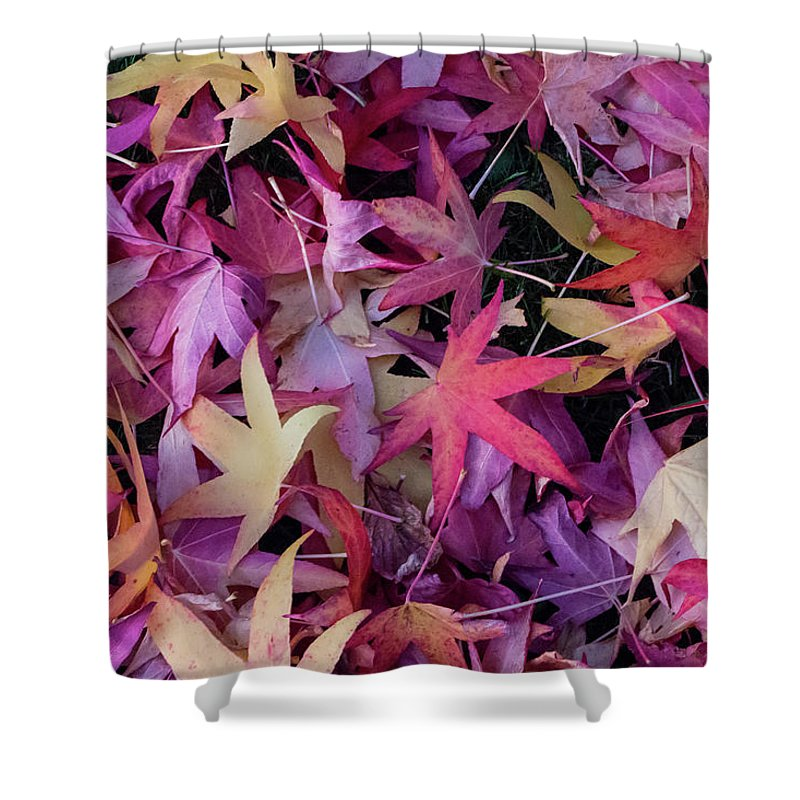 Leaf Shower Curtain featuring the photograph Nature's Confetti by Brigitte Mueller