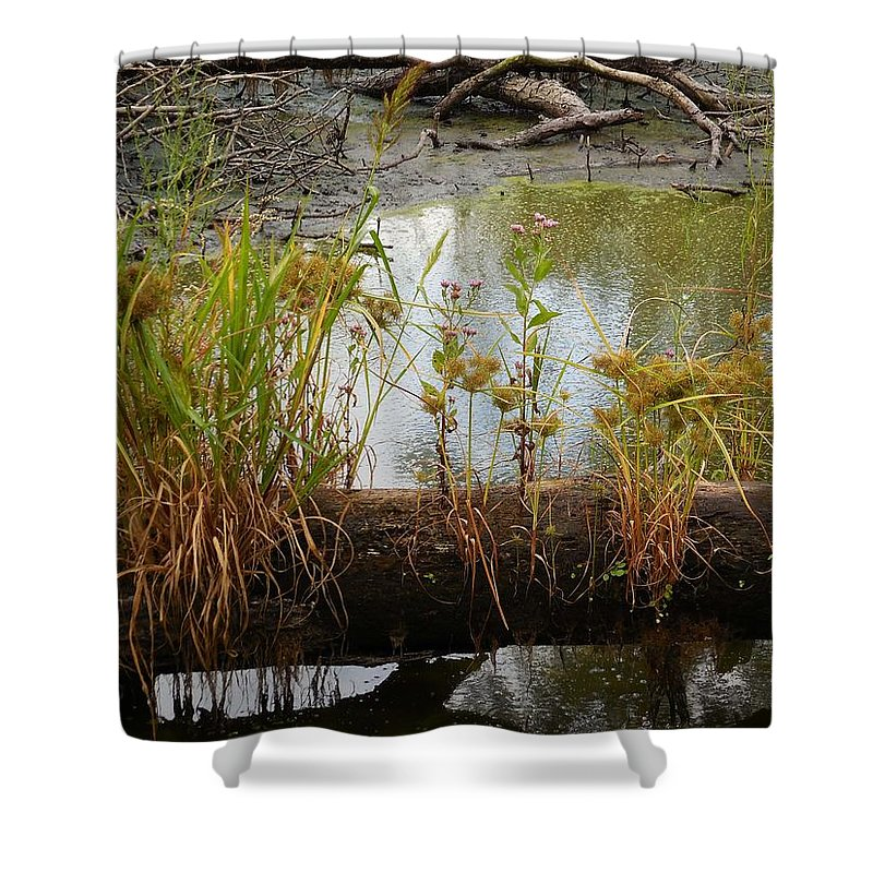 Marsh Shower Curtain featuring the photograph Natures Flower Pot by Captain Debbie Ritter