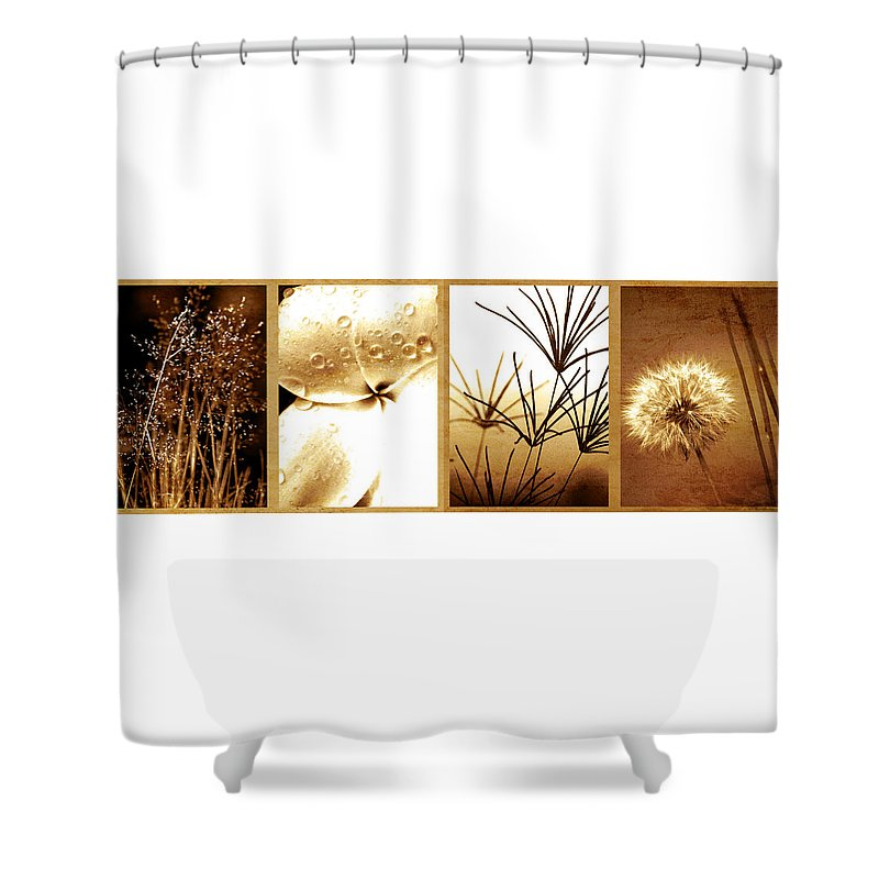 Floral Shower Curtain featuring the photograph Nature's Window by Holly Kempe