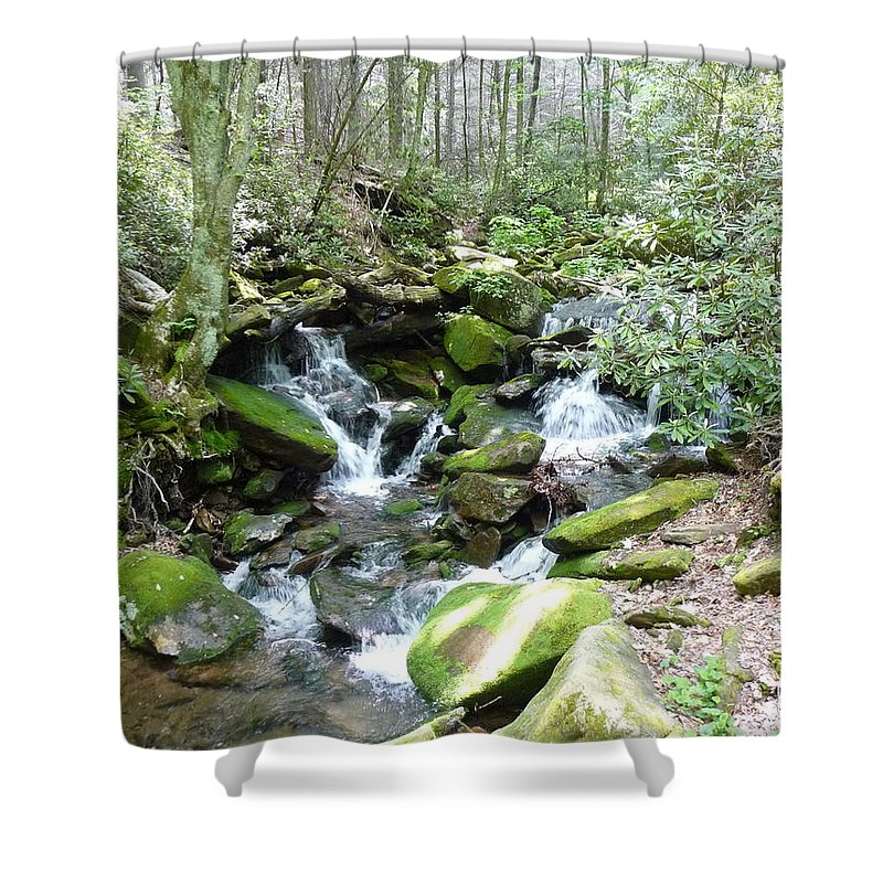 Nc Forests Shower Curtain featuring the photograph Near The Grotto by Joel Deutsch