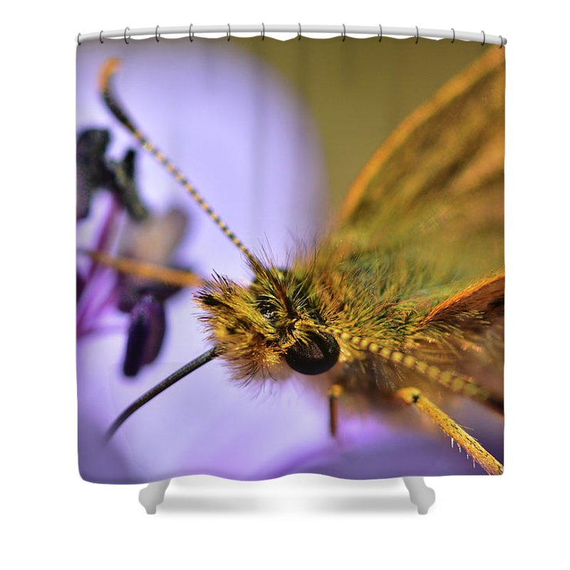 Butterfly Shower Curtain featuring the photograph Nectar Smoothie by Garrick Girard