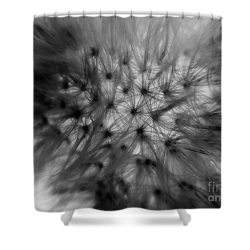 Macro Shower Curtain featuring the photograph Negative Dandelion by Robert Coon Jr