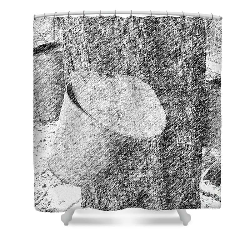 Maple Shower Curtain featuring the digital art New England Spring by Smilin Eyes Treasures