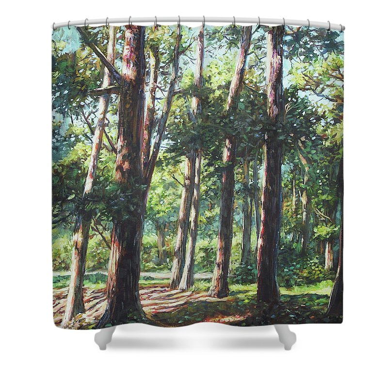 Trees Shower Curtain featuring the painting New Forest Trees With Shadows by Martin Davey