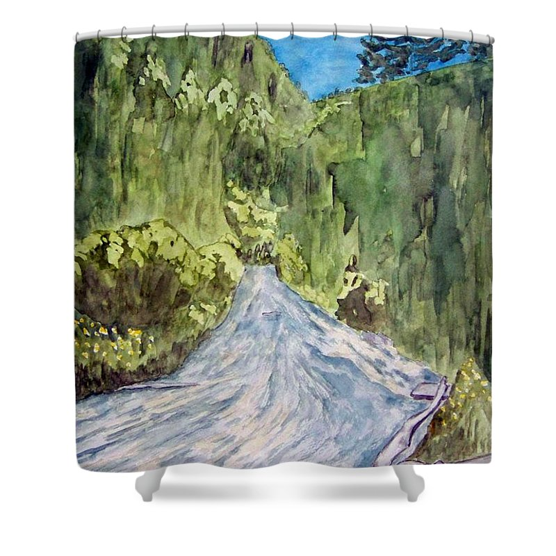 New Mexico Art Shower Curtain featuring the painting New Mexico Canyon Impression by Larry Wright