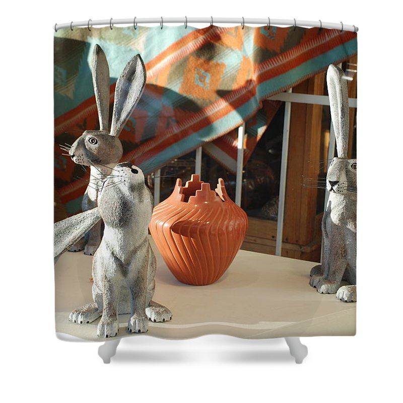 Rabbits Shower Curtain featuring the photograph New Mexico Rabbits by Rob Hans