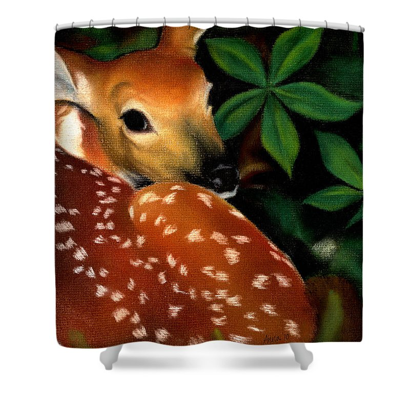 Fawn Shower Curtain featuring the drawing Newborn by Anna Katherine