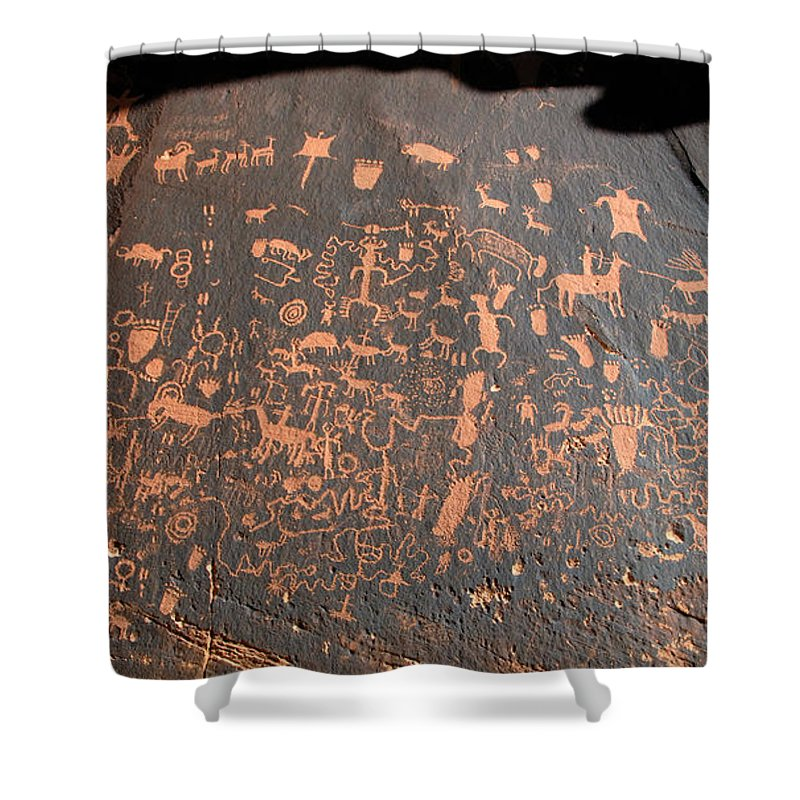 Newspaper Rock State Park Utah Shower Curtain featuring the photograph Newspaper Rock by David Lee Thompson