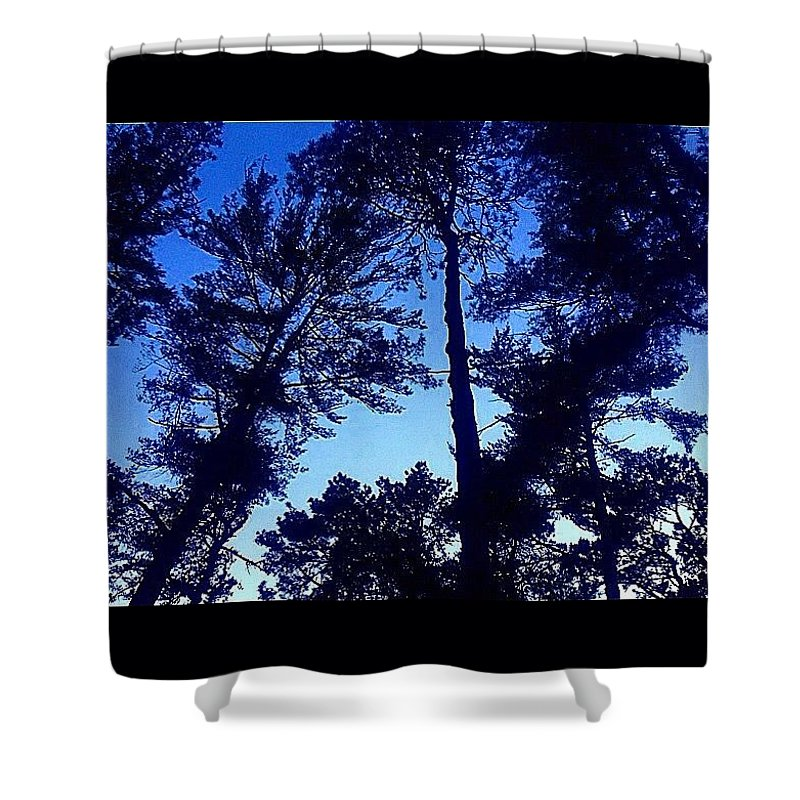Massachusetts Shower Curtain featuring the photograph Nickerson State Forest by Kate Arsenault