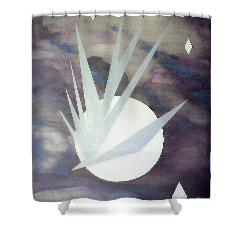 Moon With Hawke And Diamond Stars Shower Curtain featuring the painting Night Hawke 2 by J R Seymour