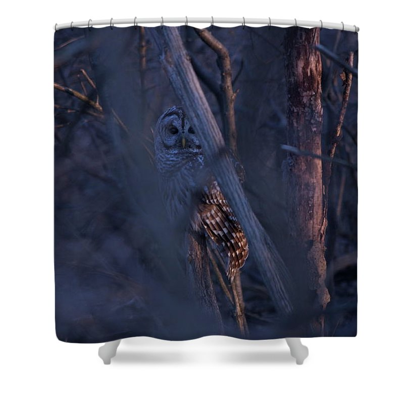Indiana Shower Curtain featuring the photograph Night Watchman by Nunweiler Photography