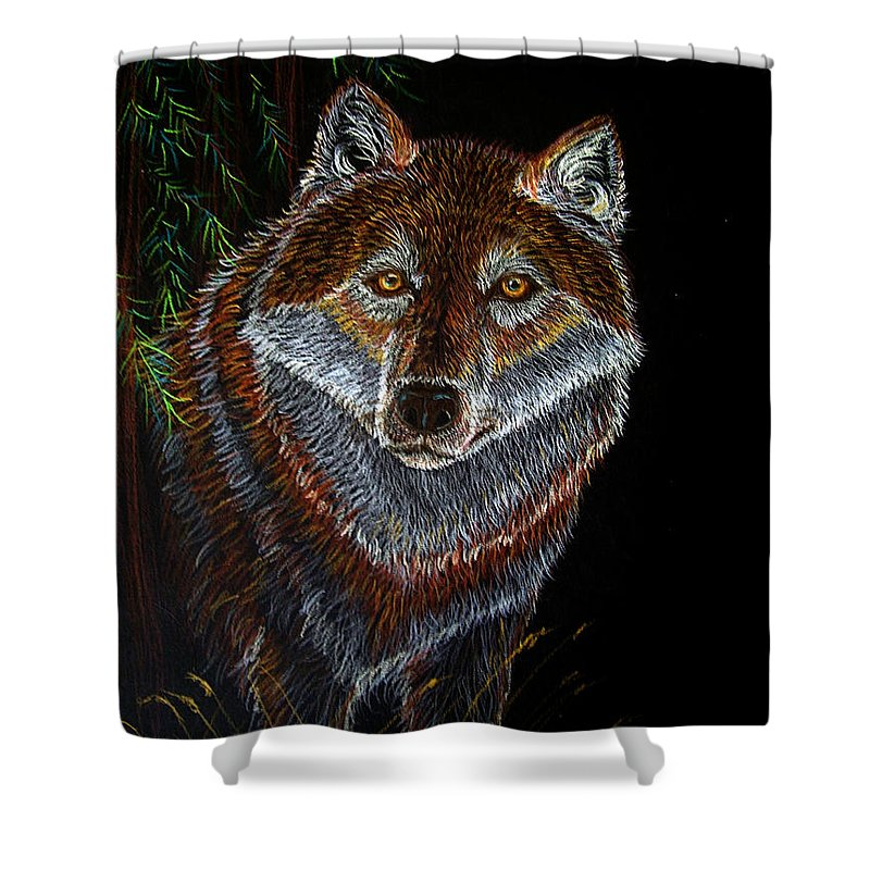 Wolf Shower Curtain featuring the drawing Night Wolf by Nick Gustafson