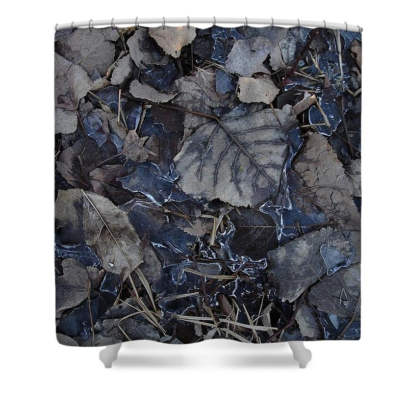 Shower Curtain featuring the photograph No Snow by Aiden Bishop