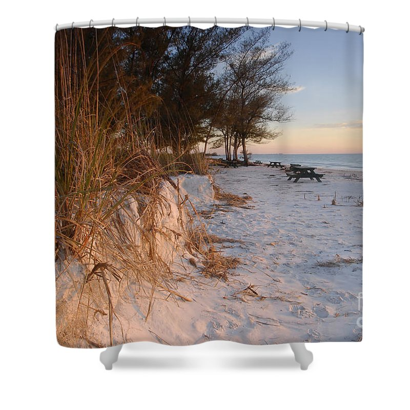 North Beach Shower Curtain featuring the photograph North Beach by David Lee Thompson