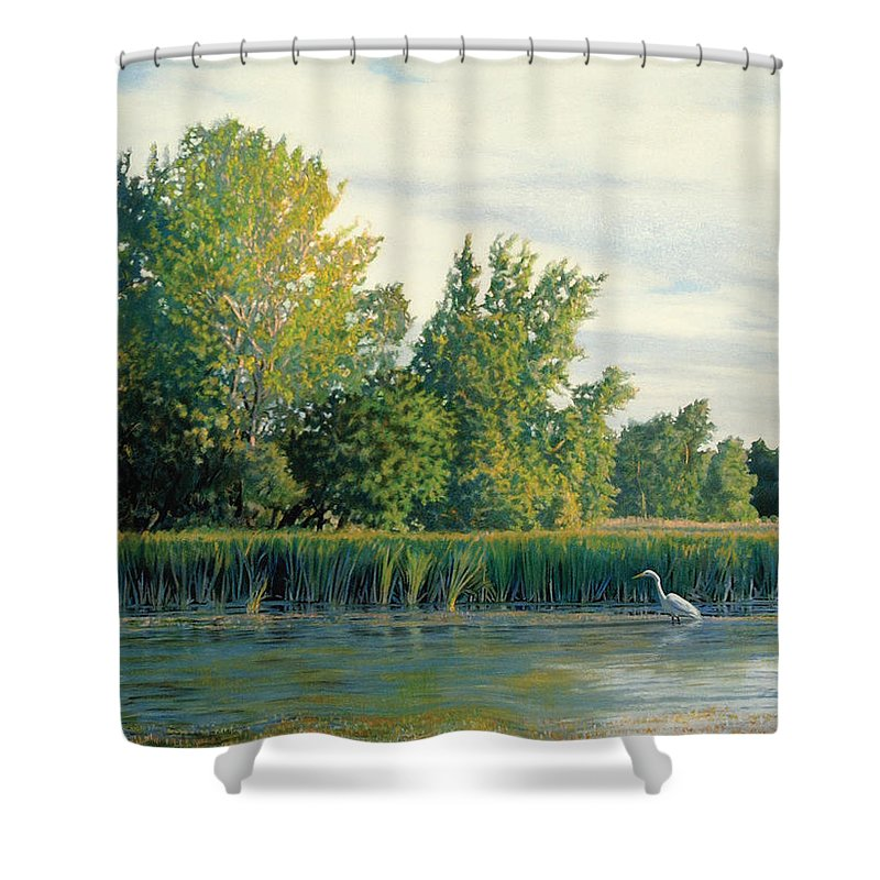 Great Egret Shower Curtain featuring the drawing North Of The Grade-great Egret by Bruce Morrison