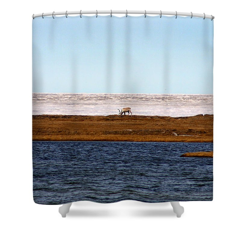 Arctic Shower Curtain featuring the photograph North Slope by Anthony Jones