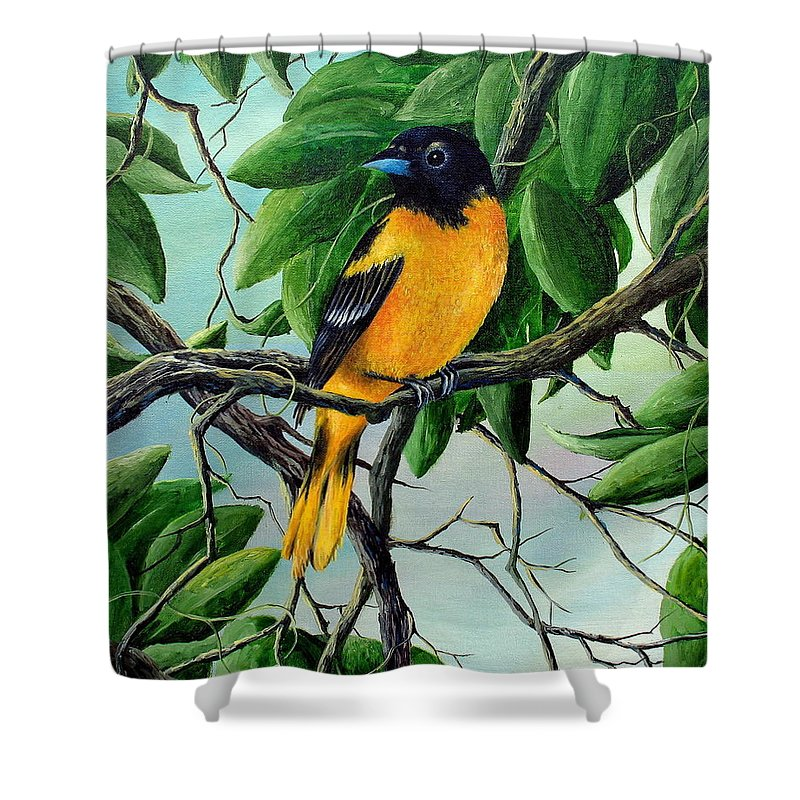 Oriole Shower Curtain featuring the painting Northern Oriole by David G Paul