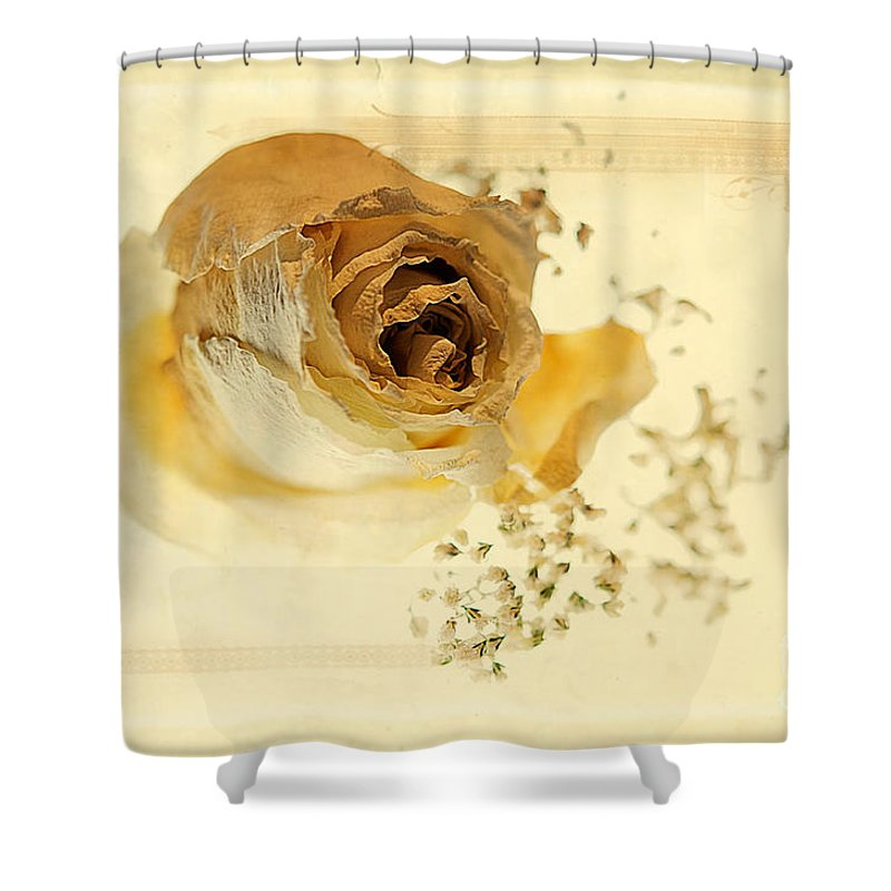 Nostalgia Shower Curtain featuring the photograph Nostalgia by Lois Bryan