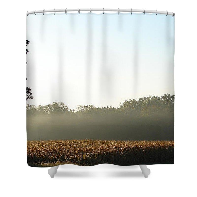 Sun Mist Corn Shower Curtain featuring the photograph November Sunrise by Luciana Seymour