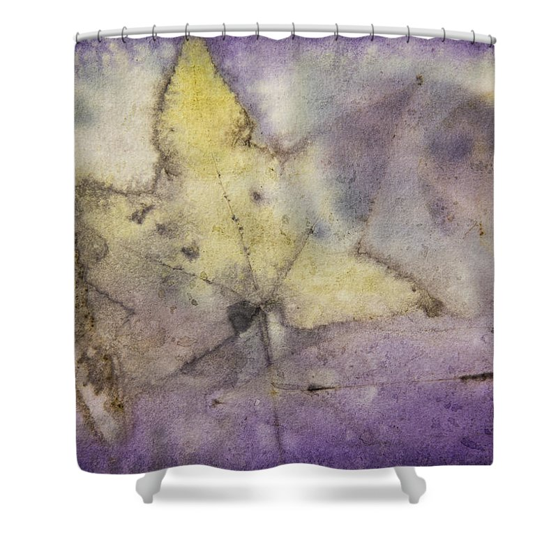 Jan Shower Curtain featuring the photograph Number 32 by Jan Durham