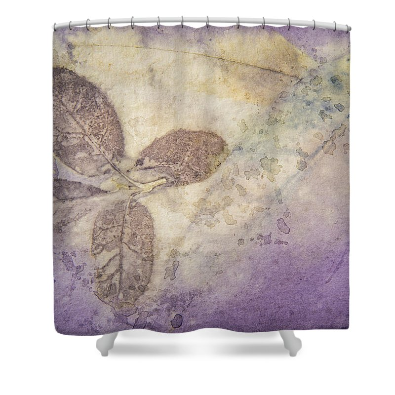 Jan Shower Curtain featuring the photograph Number 34 by Jan Durham