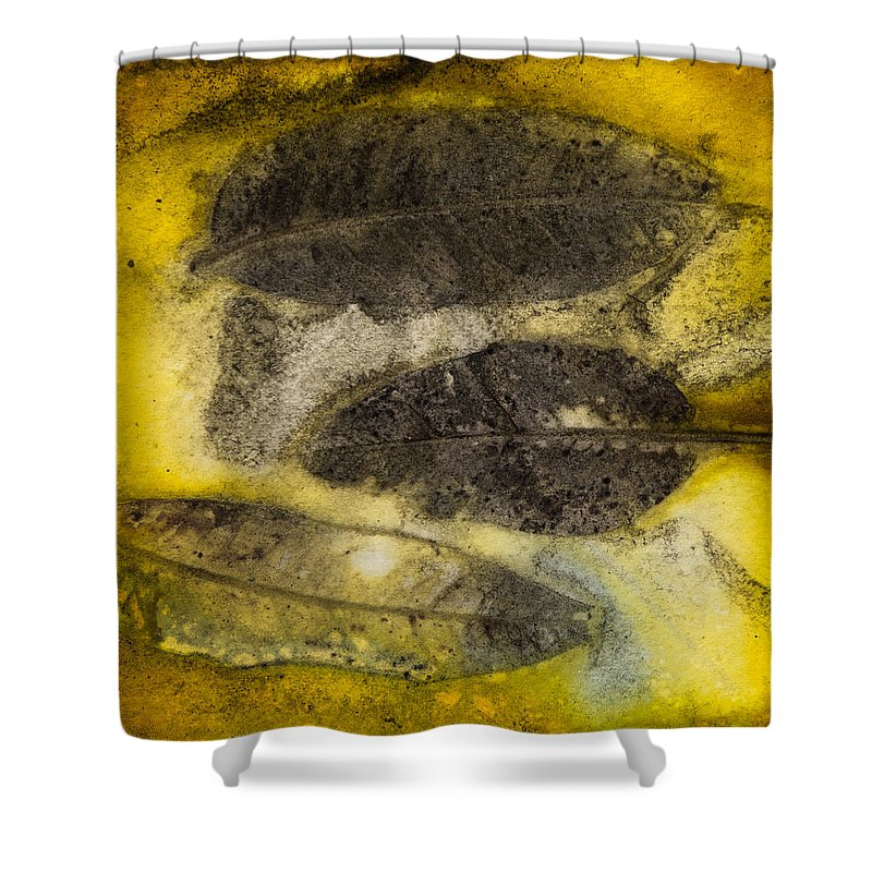 Jan Shower Curtain featuring the photograph Number 51 by Jan Durham