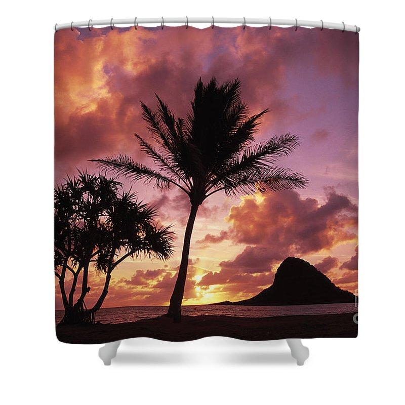Beach Shower Curtain featuring the photograph Oahu, Mokolii Island by Greg Vaughn - Printscapes
