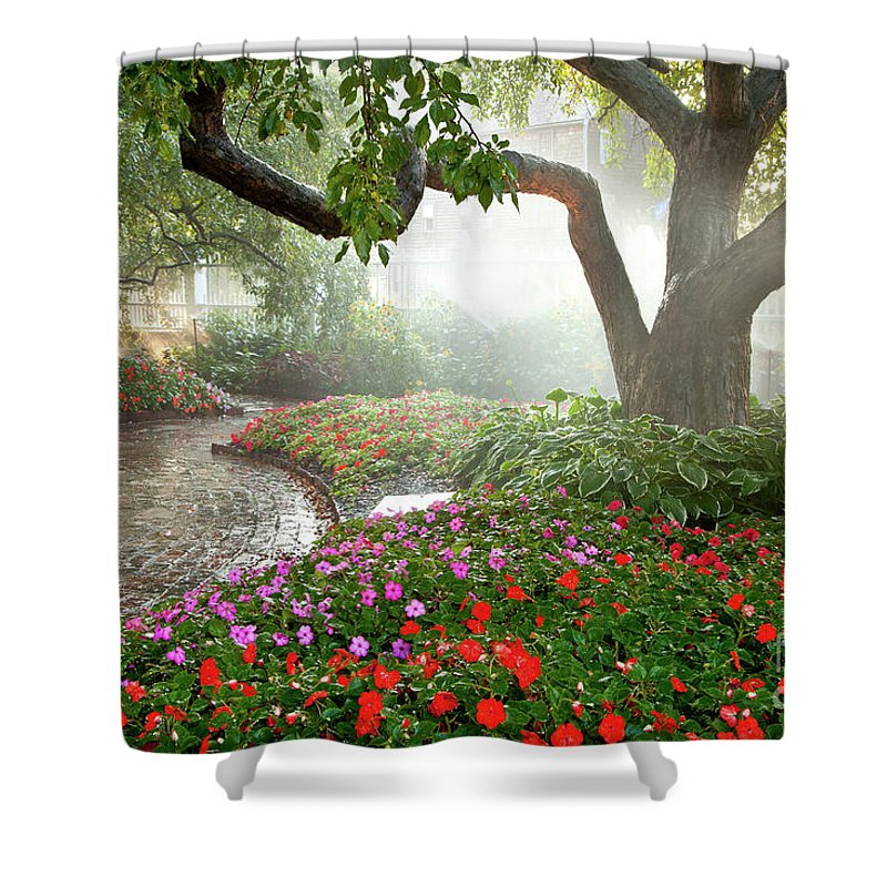 August Shower Curtain featuring the photograph Oasis by Susan Cole Kelly