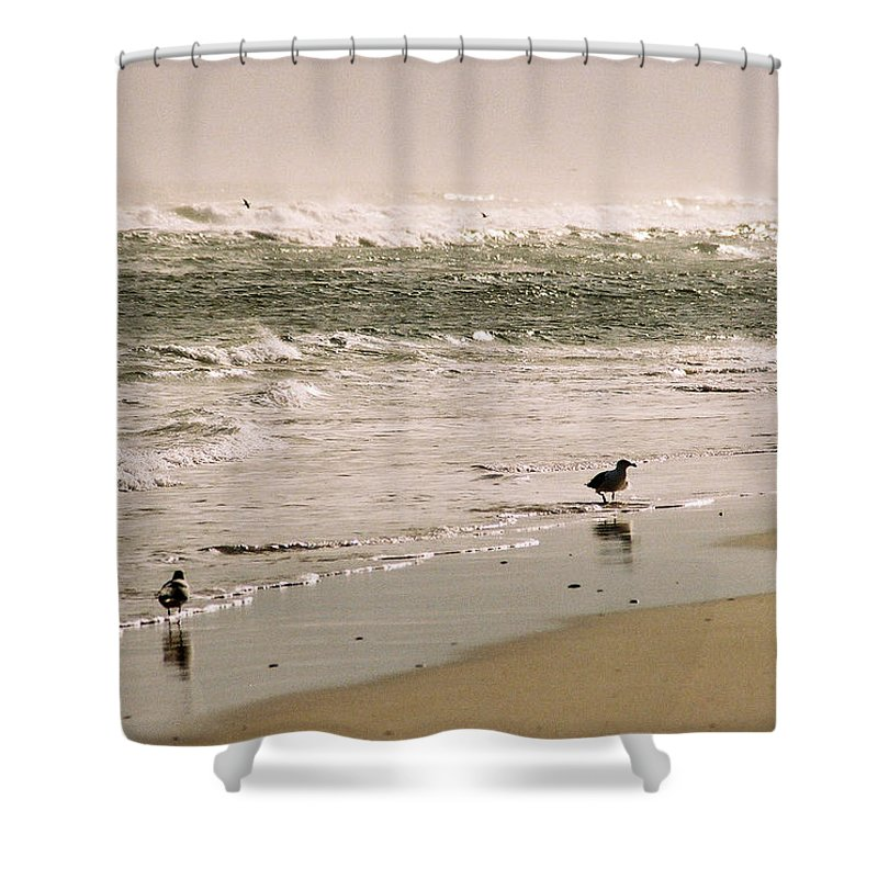 Seascape Shower Curtain featuring the photograph Ocean Edge by Steve Karol