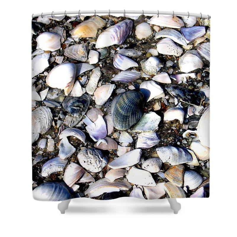 Ocracoke Shower Curtain featuring the photograph Ocracoke Shells by Wayne Potrafka