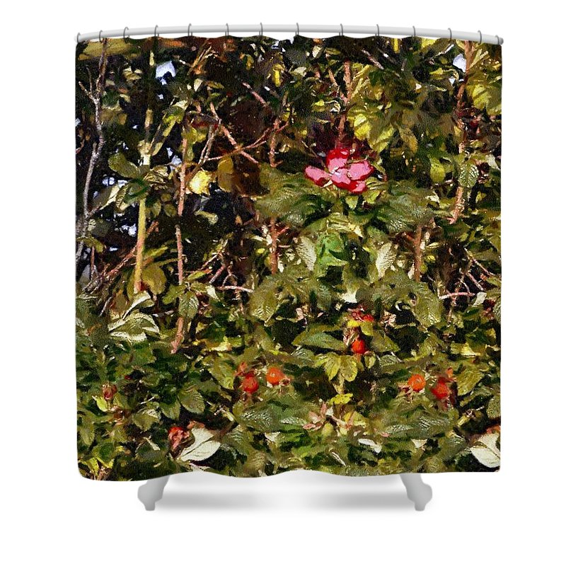 Autumn Shower Curtain featuring the painting October Rose by RC DeWinter